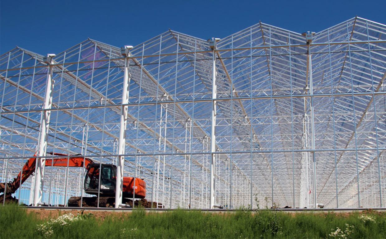 Venlo-Gewächshäuser im Bau