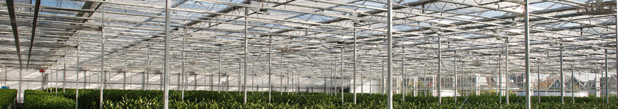 Écrans thermiques et d'ombrage dans une serre en verre Venlo